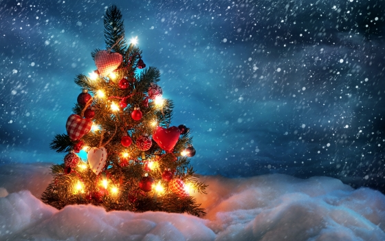 beautiful_christmas_tree-wide1